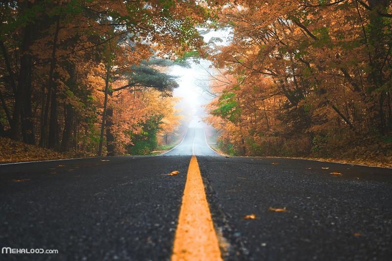 پاییزی mehalood 2 - مجموعه متن پاییزی برای اینستاگرام