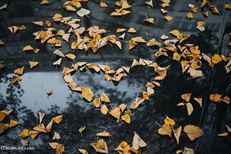 پاییزی mehalood 3 - مجموعه متن پاییزی برای اینستاگرام